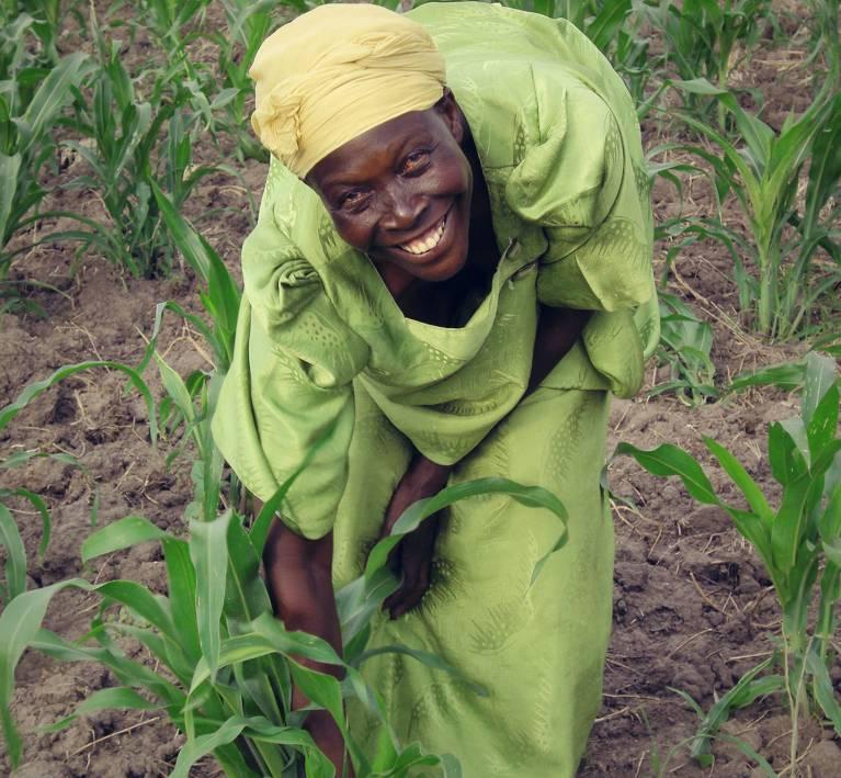 Formazione per agricoltori e allevatori